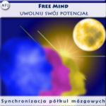 Free-mind-synchronizacja-polkul-mozgowych_okladka1[1]